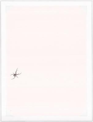 Untitled (Grape Spider)