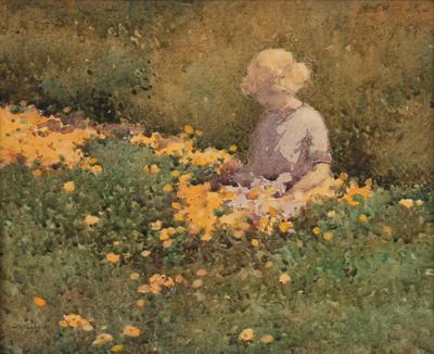 Among the Marigolds