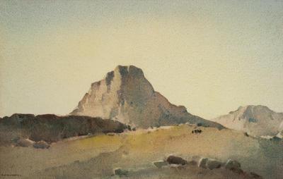 Arid Hills